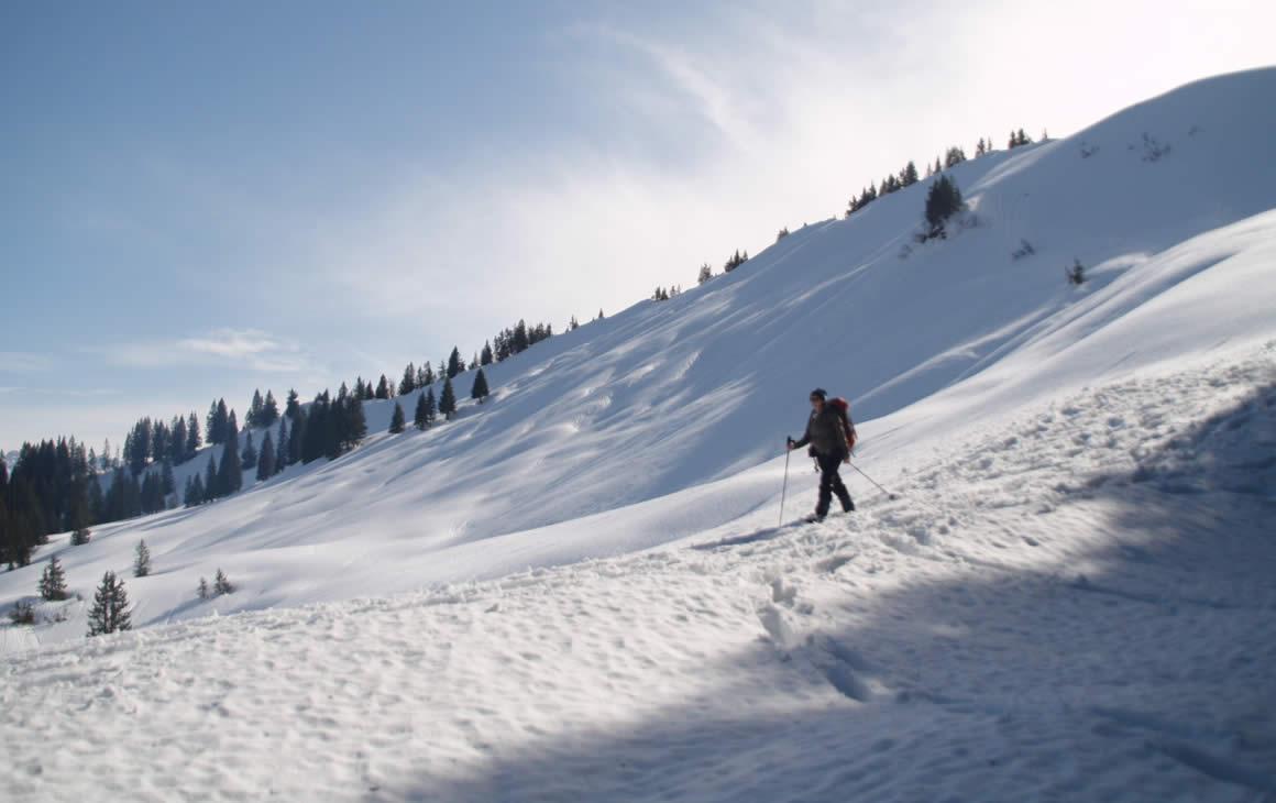 Schneeschuhwanderung Piesenkopf